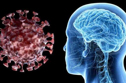 کروناویروس از راه بینی، مغز را آلوده میکند